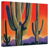 Rick Kersten 'Saguaro Dawn' Gallery Wrapped Canvas Stretched Canvas Print by Rick Kersten