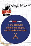 The Big Bang Theory - Stupid Vinyl Sticker Klistermärken
