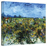Vincent van Gogh 'Green Vineyard' Wrapped Canvas Art Gallery Wrapped Canvas by Vincent van Gogh