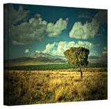 Mark Ross 'Taking a Moment' Wrapped Canvas Art Stretched Canvas Print by Mark Ross