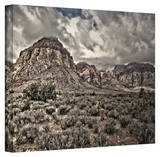 Mark Ross 'No Distractions' Wrapped Canvas Art Stretched Canvas Print by Mark Ross