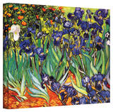 Vincent van Gogh 'Irises in the Garden' Wrapped Canvas Art Stretched Canvas Print by Vincent van Gogh