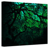 John Black ' Japanese Dark Tree' Gallery Wrapped Canvas Stretched Canvas Print by John Black