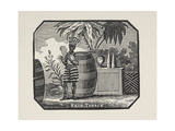 (Possibly Tribal) Man With Large Barrels and Palm Tree Giclee Print by Thomas Bewick
