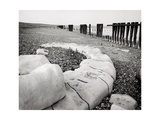 Groynes and Older Stone Groynes, Winchelsea, 1988 Giclee Print by Fay Godwin