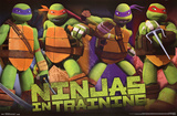 Teenage Mutant Ninja Turtles - Profile Cartoon Poster Print