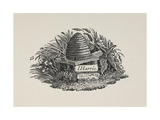 Beehive With a Sign Saying 'I Harris' Below It Giclee Print by Thomas Bewick