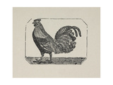 A Cockerel. Giclee Print by Thomas Bewick