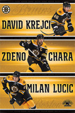 Boston Bruins Team NHL Sports Poster Prints