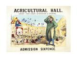 Agricultural Hall, Islington Giclee Print