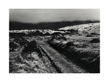 Path Above Talybont, Mist Drovers Roads, Wales Giclee Print by Fay Godwin