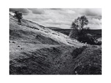 Aberedw Hill, Ruins With Sheep 1983 Drovers Roads, Wales Giclee Print by Fay Godwin