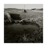 Flooded Fields Surrounded by Dry Stone Walls Giclee Print by Fay Godwin
