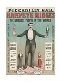 Harvey's Midges Giclee Print
