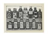 Various Preserves Giclee Print by Isabella Beeton