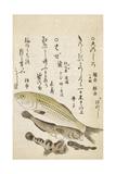 Four Fish Giclee Print by Katsuma Ryusai