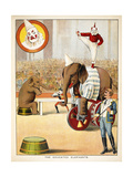 The Educated Elephants'. an Involving Elephants and Clowns in a Circus Lámina giclée