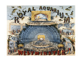 Royal Aquarium Giclee Print