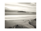 Morfa Harlech Nature Reserve Giclee Print by Fay Godwin