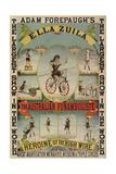 The Australian Funambulist. Giclee Print