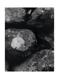 Wall Near Talybont 1 Drovers Roads, Wales Giclee Print by Fay Godwin