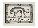 Sweet Powder'. Illustration Of a Tiger-like Animal Giclee Print by Thomas Bewick