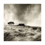 Top Withens Near Haworth, Yorkshire 1977 Giclée-Druck von Fay Godwin