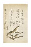 Catfish Giclee Print by Katsuma Ryusai