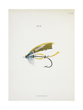 A Fishing Fly and Hook, Fishing Tackle Giclee Print by Fraser Sandeman