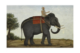 An Elephant Keeper Riding His Elephant Giclee Print