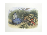 in Fairy Land Giclee Print