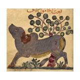 Buffalo Giclee Print by Aristotle ibn Bakhtishu
