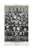 Beverages, Assorted Wines and Spirits Giclee Print by Isabella Beeton