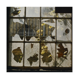 Broken Window With Flowers Growing Giclee Print by Fay Godwin