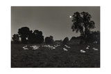 Moonlight, Avebury 1974 From the Ridgeway Series Giclee Print by Fay Godwin