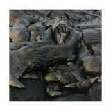Lava Cooling After Volcanic Explosion Giclee Print by Fay Godwin