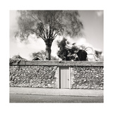 Walled Garden, Winchelsea 1979 Giclee Print by Fay Godwin