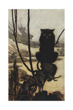 Illustration From Jorinda and Joringel Of a Black Cat Giclee Print by Arthur Rackham