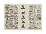 Page Of Various Designs Including an Animal Alphabet, Plants and Objects Giclee Print by Thomas Bewick