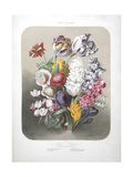 A Bouquet Of Flowers Including Tulips, Hyacinth, Cyclamen, Snowdrops, Crocuses and Peonies. Giclee Print by Elisa Champin