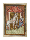 St. Cuthbert's Horse Pulls Down Bread and Meat Giclee Print by  Bede