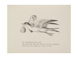 Grey Gull, Carrying Owl and Carpet Bag From a Collection Of Poems and Songs by Edward Lear Giclee Print by Edward Lear