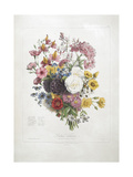 A Bouquet Of Flowers Giclee Print by Elisa Champin