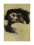 A Portrait Of a Dog Giclee Print