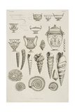 Illustration Of Shells and Ancient Vessels, As Patterns For Plasterwork Additions Giclee Print by Giovanni Piranesi