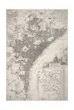 Bunarus Giclee Print by J. Pricep
