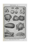 Assorted Vegetables Giclee Print by Isabella Beeton