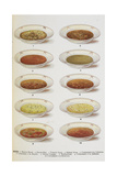 Assorted Bowls Of Soup Giclee Print by Isabella Beeton