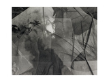 Plants Growing Through Broken Pane Of Glass Giclee Print by Fay Godwin