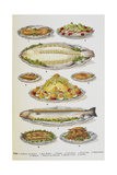 Assorted Fish Dishes Including Salmon, Trout, Cod and Scallops Giclee Print by Isabella Beeton